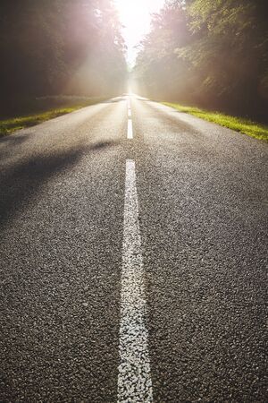 Wet asphalt road in forest against the sun with lens flare effect. 스톡 콘텐츠