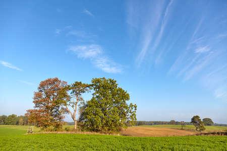 Picture of a beautiful peaceful rural landscape.
