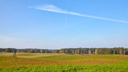Rural panoramic landscape with hunting tower, field and forest.