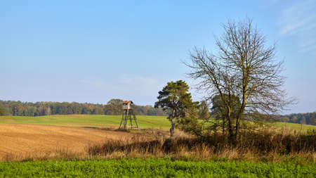 Rural landscape with hunting tower, field and forest.