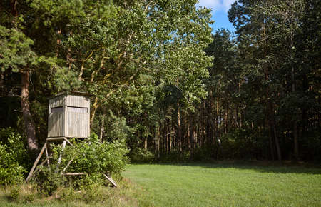 Wooden deer stand (hunting blind) on forest edge.