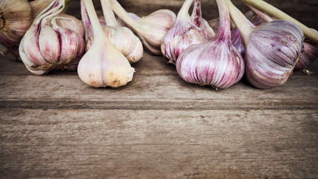 Organic garlic on a wooden table, selective focus, space for text. Standard-Bild