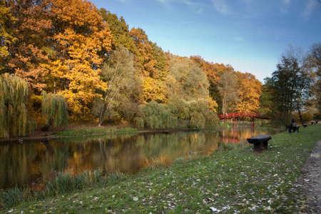 torun: Poland, Torun. Beautiful river in autumn, visable river in forest Stock Photo