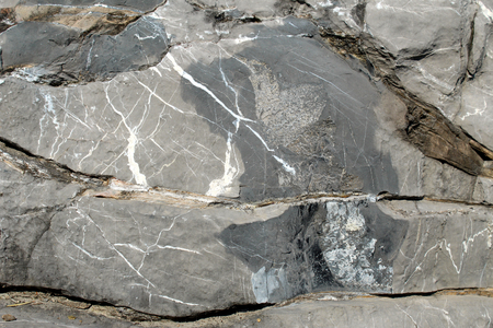 Black limestone with white calcite veins