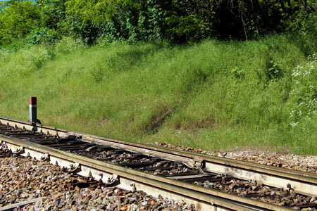 Modern railroad track in the forest