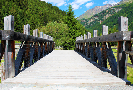 Wooden pedestrian bridge in the forest seen in frontal perspective and surrounded by mountains