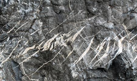 Tension gashes (en echelons veins) filled by calcite and quartz on a rock boulder Stockfoto