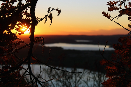 Tree branches without leaves and lakes in the background at sunset