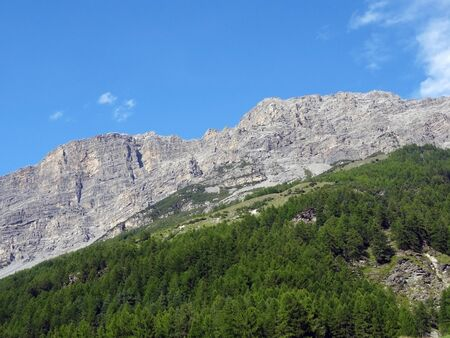 Mountain without snow partially covered by a forest against clear blue sky in summer Zdjęcie Seryjne