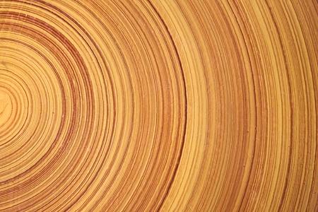 Contexte abstrait comme tranche de naturel du bois bois de journal.  Banque d'images