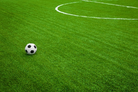 soccer ball on grass: Training playground. soccer ball on field