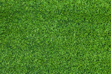Artificial grass background  Stock Photo