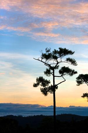Beau coucher du soleil color� Banque d'images