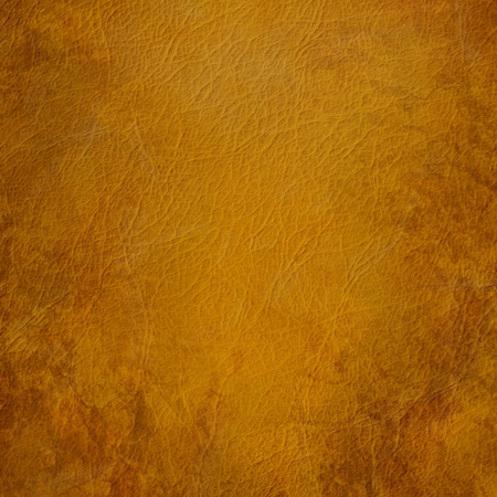 hide: Grunge brown leather background Stock Photo