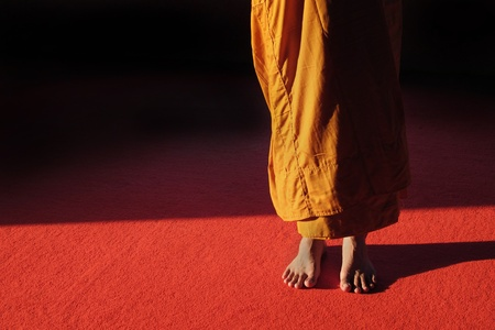 buddhists: Buddhist monk meditation in standing pose  in peace