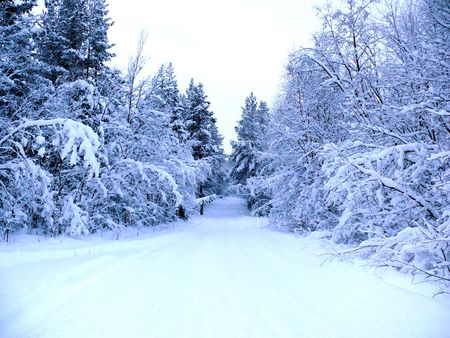 Winter landscape Stock Photo