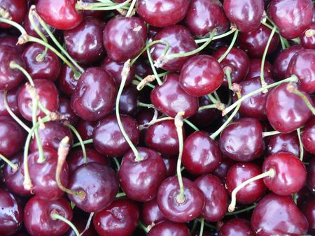 Cherries.  Stock Photo