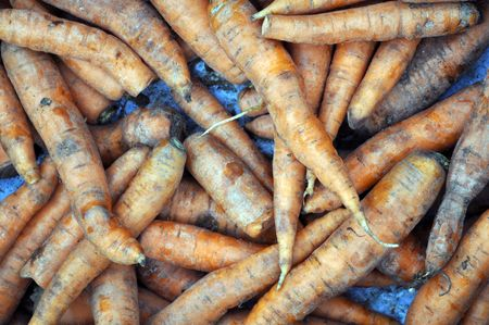 a lot of dirty ripe carrots