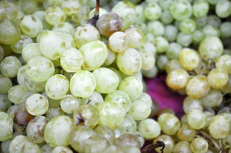 a lot of ripe grapes Kish Mish  Stock Photo