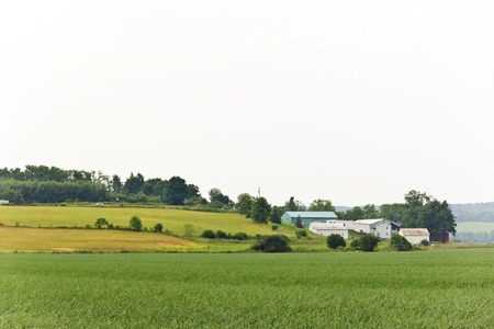 humid: Barns in the distance on a humid summer day