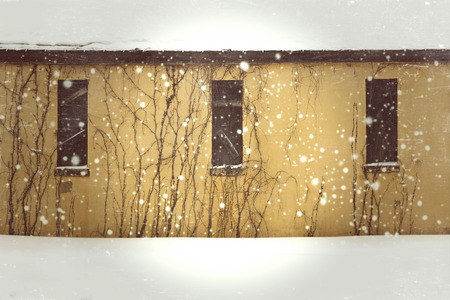 boarded up: Yellow abandoned building on a snowy day with boarded up windows and vines