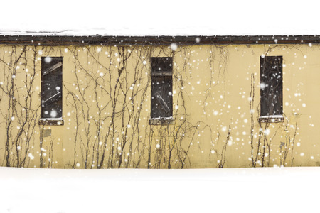 Yellow abandoned building on a snowy day with boarded up windows and vines