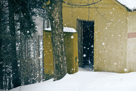 forlorn: Yellow abandoned outhouse on a snowy day with forest