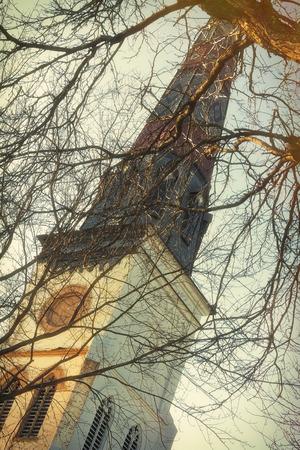 gnarled: Retorcidas ramas se ciernen sobre campanario de la iglesia espeluznantes en el d�a de invierno de niebla
