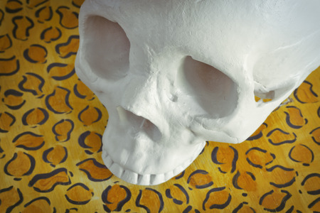 cannibal: Cool human skull against leopard print background
