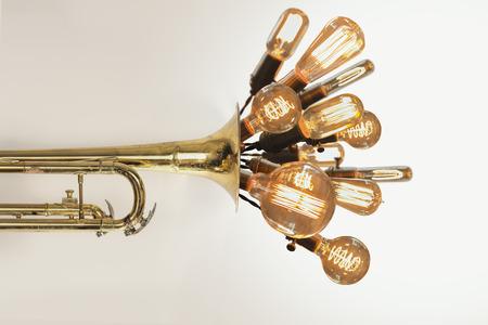 enchufe de luz: Bulbos decorativos antiguos de estilo edison luz de filamento en erupci�n de la trompeta