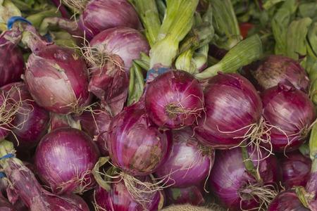 onion: Cebollas frescas cosechadas rojas con hojas en el mercado de los agricultores