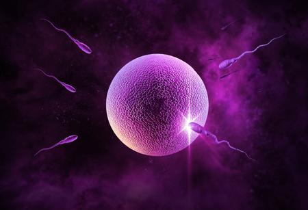 Piscine course des spermatozoïdes à féconder un ovule humain fertile Banque d'images - 45062477