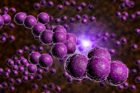 Closeup of purple staph bacteria in computer generated image Stockfoto