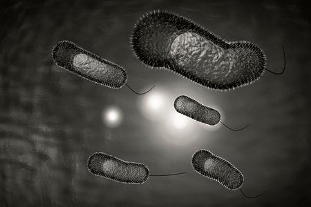 colera: Close up 3D ilustraci�n de la infecci�n microsc�pica bacteria del c�lera