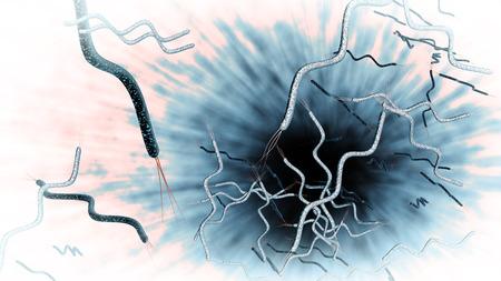 bacterias: Microscopio generada por ordenador 3D de cerca de rizado bacterias Spirella en forma