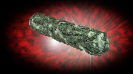 e coli: Escherichia coli also known as Ecoli bacteria in health science background 3D generated graphic Stock Photo