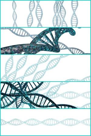 3D-DNA-Strang-Collage mit lebendigen Farben für Genetik Hintergrund Standard-Bild - 45464604