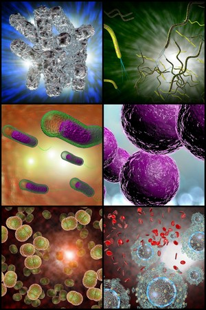 meningococcal: 3D microscope close up of various bacteria in collage imagery