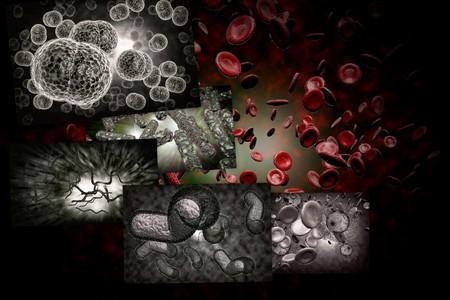 bacterias: Microscopio 3D de cerca de varios bacterias en las imágenes del collage