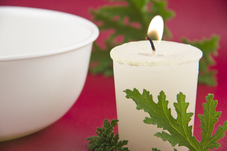 Citronella plant leaves with a citronella candle, no mosquitos Banque d'images