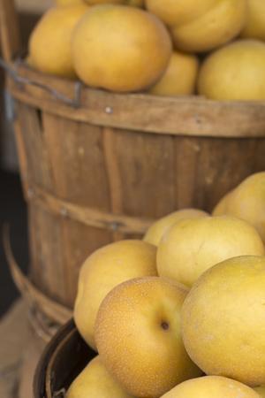 agricultor: Pila de peras asi�ticas maduras jugosas en el mercado local de los granjeros