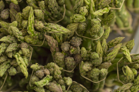 bundles: Bundles of fresh green asparagus at local farmers market Stock Photo
