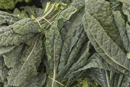 bunch up: Bunch of green spinach in close up at local farmers market