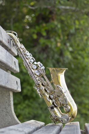 Summer Jazz saxophone in nature propped on park bench