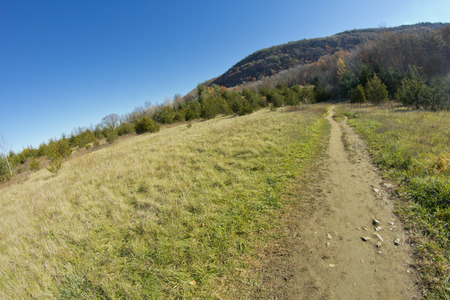 dirt: Dirt path leading to Appalachian mountains on cool autumn day Stock Photo