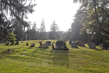 unnamed: Blank graves in a graveyard in early morning