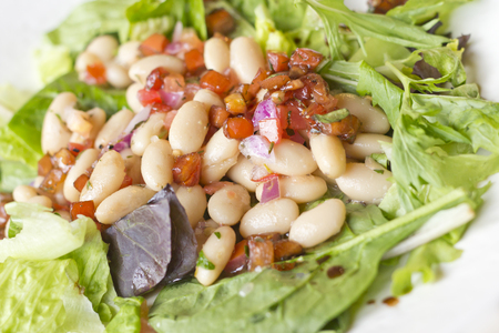 diced: Cannellini bean salad on bed of romaine lettuce with diced sauteed tomato Stock Photo