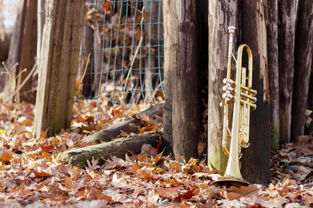 worn: Old worn trumpet out in the wilderness on fence autumn