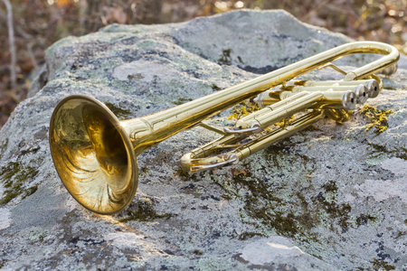 worn: Old worn trumpet out in the wilderness