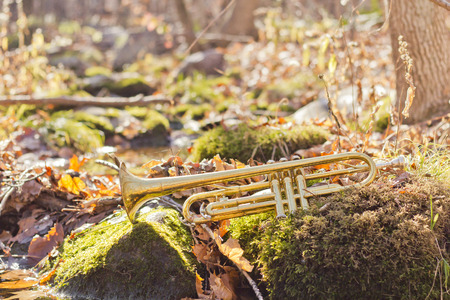 lost lake: Old worn trumpet out in the wilderness next to stream